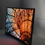 Samsung OLED curved